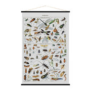 insects-print