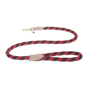 rock-candy-rope-lead-parrot-large
