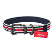 striped-dog-collar-large