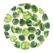 vegetable-garden-sprouts-salad-plate