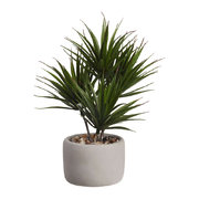 deko-bonsai-palm-plant