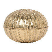 obelia-canister-object-gold-large