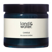 mandarin-mint-scented-candle