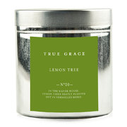 walled-garden-candle-in-tin-lemon-tree-250g