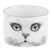 cat-sugar-bowl