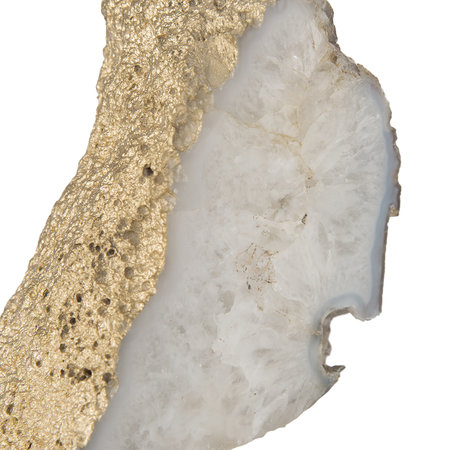 Luxe - Gold Fossil Object