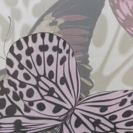 Roberto Cavalli - Fading Butterflies Bed Set - Mauve - Super King