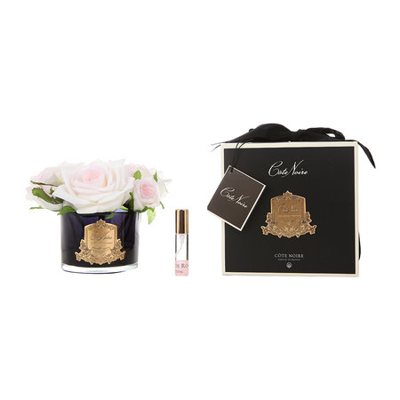 Côte Noire - Roses in Black Glass with Giftbox - Blush