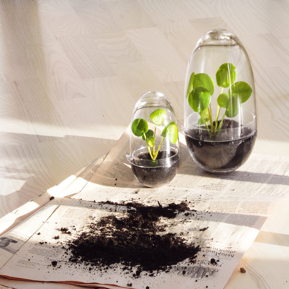 Design House Stockholm - Grow Greenhouse - Clear - Small