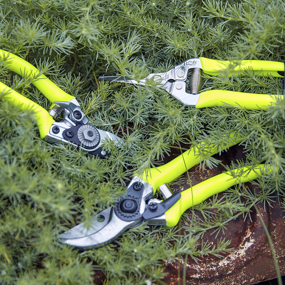 Burgon & Ball - Flora Brite Bypass Secateur - Yellow