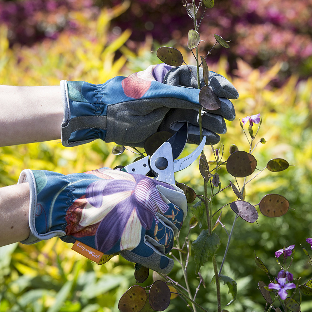 RHS Gifts from Burgon /& Ball PASSIFLORA Design Gloves