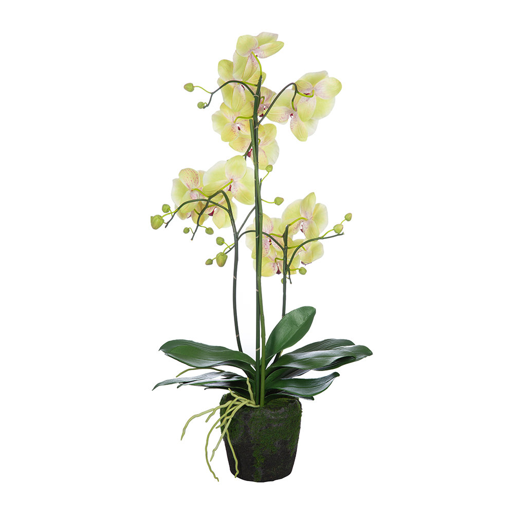 Silk-ka - Artificial Orchid Plant - Yellow/Pink