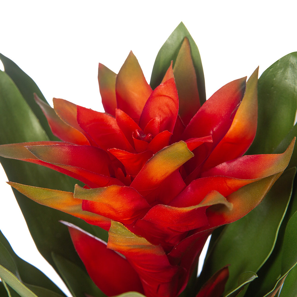 Silk-ka - Artificial Bromeliad Plant - Orange