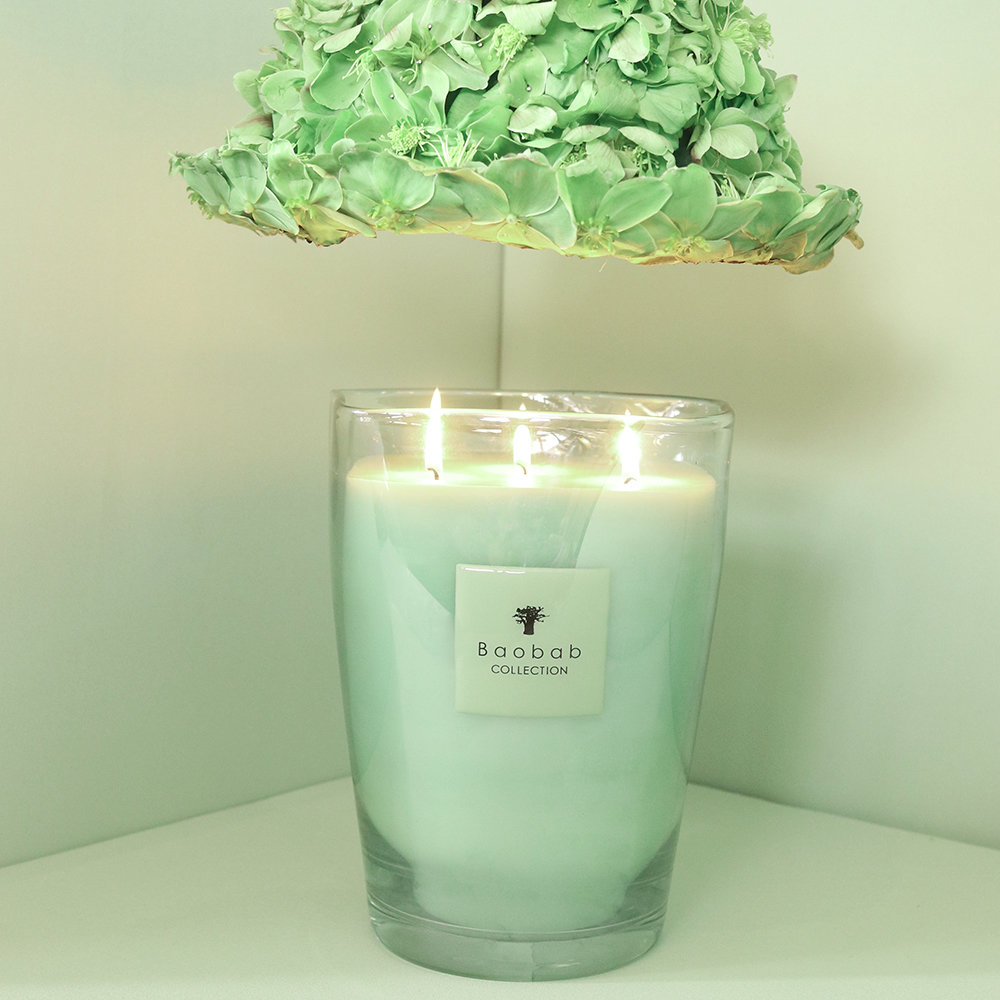 Baobab Collection - Vidra Scented Candle - Limited Edition - Poetry - 16cm
