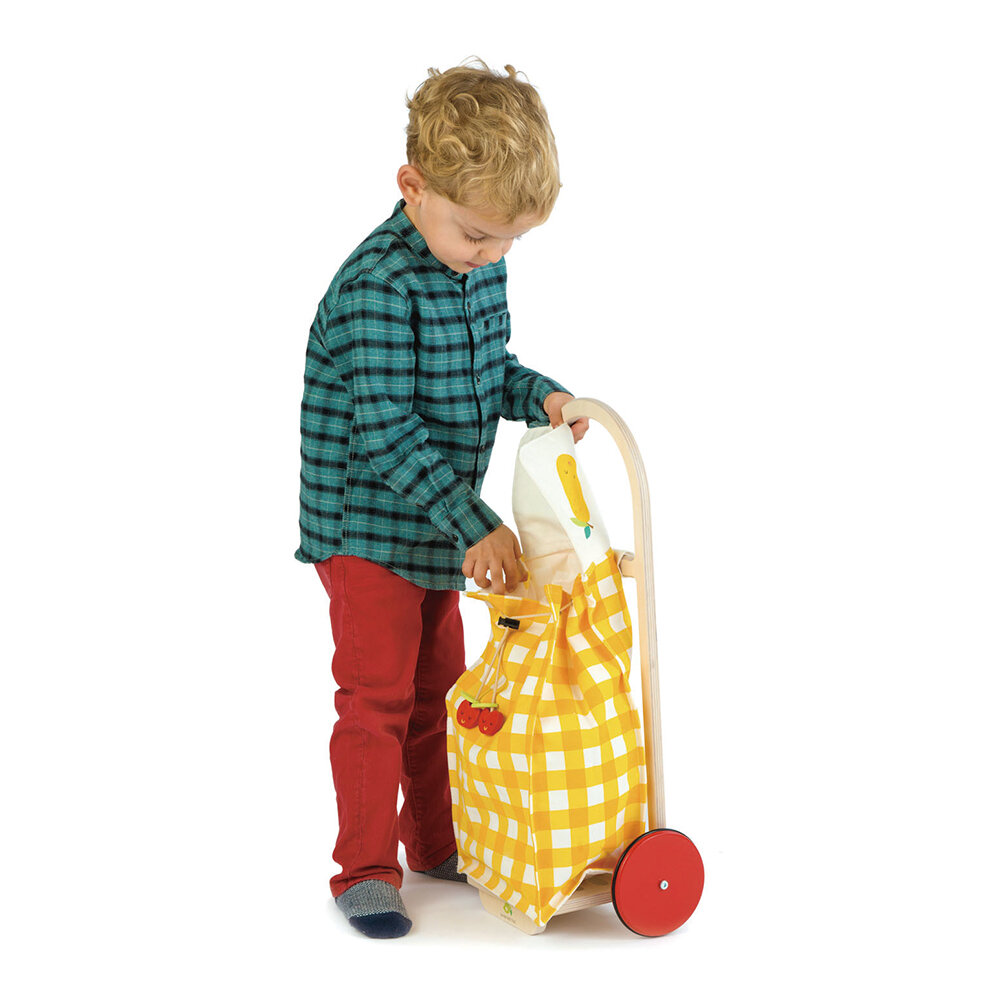 Tender Leaf Toys - Kids Pull Along Shopping Trolley - Yellow
