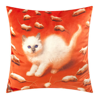 Toiletpaper Cushion Cover - 50x50cm - Kitten