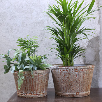 Abari Wide Zinc Plant Pot - Large