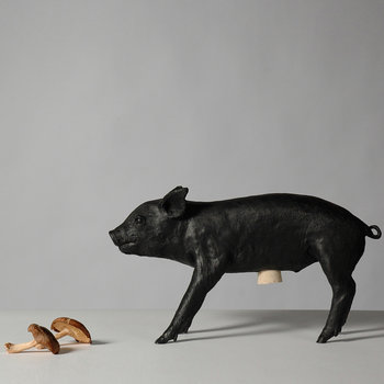 Reality Collection Bank in the Form of a Pig Money Bank - Black