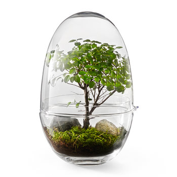 Grow Greenhouse - Clear