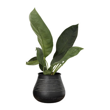 Stribe Vase - Black
