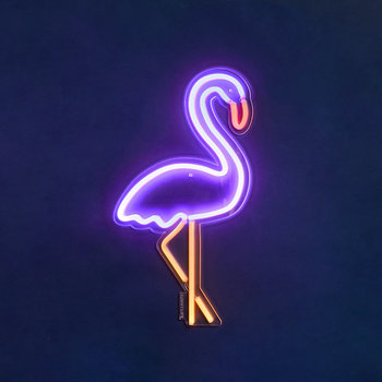 Neon LED Wall Light - Flamingo