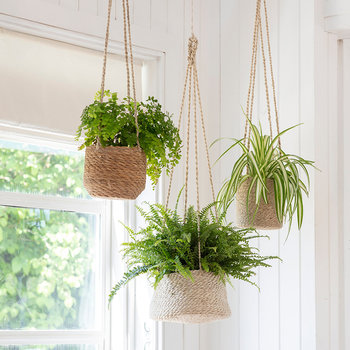 Tapered Hanging Plant Pot