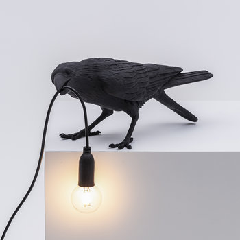 Bird Outside Lamp - Playing - Black
