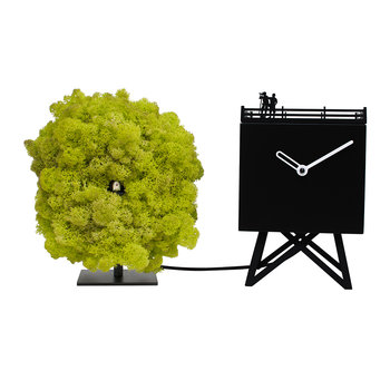 Bird Watching Cuckoo Clock - Black/Moss