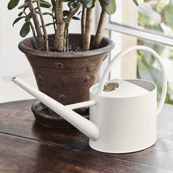 Sophie Conran Indoor Watering Can - Buttermilk