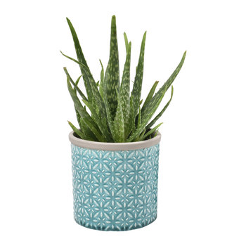 Tuscany Indoor Pot - Blue