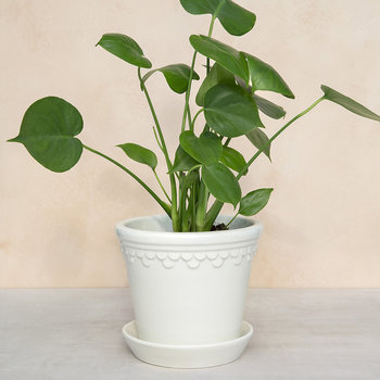 Copenhagen Glazed Plant Pot and Saucer - White