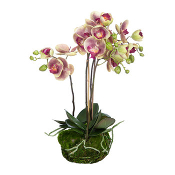 Artificial Orchid - Pink - 48cm