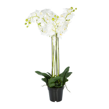 Artificial Orchid Plant - White