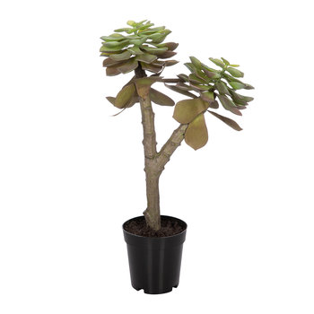 Artificial Succulent Pot - Green - 52cm