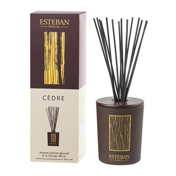 Decorative Bouquet Reed Diffuser - 100ml - Cèdre