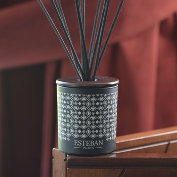 Decorative Bouquet Reed Diffuser - 100ml - Teck &Tonka