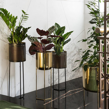 Raised Gold Planter - Tall