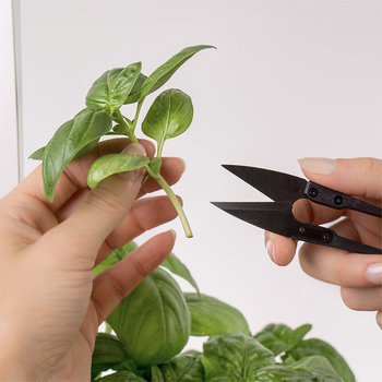 Mini Snips Herb Trimmer