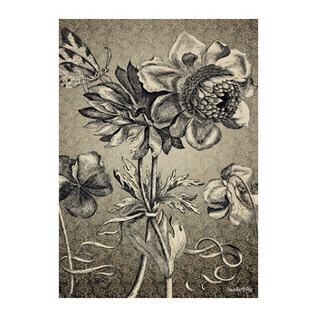 Antique Floral Print - Black/White - 50x70cm
