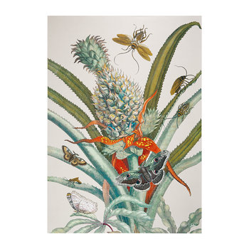 Botanical Pineapple and Butterfly Print - 50x70cm