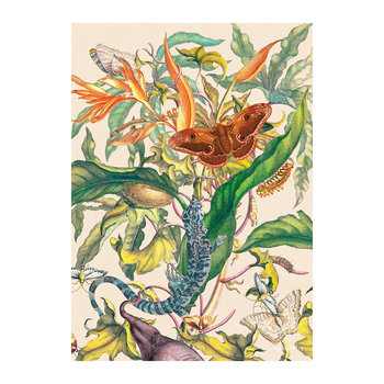 Botanical Flower and Butterfly Print - 50x70cm