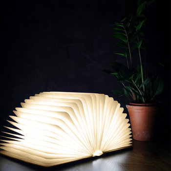 Smart Book Light - Walnuss