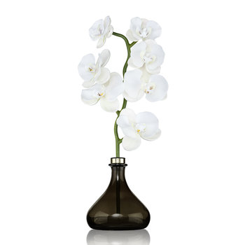 Orchid Flower Diffuser - 250ml - White Flowers