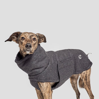 Windsor Flannel Dog Coat - Anthracite
