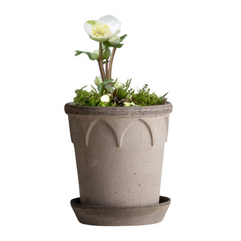 Elizabeth Plant Pot and Saucer - Gray
