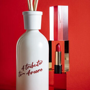 Ambiente Reed Diffuser - 500ml