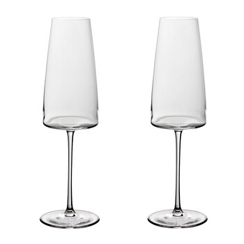 Metro Chic Champagne Flute - Set of 2