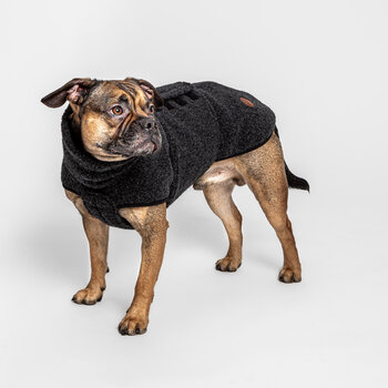 Derby Dog Sweater - Anthracite