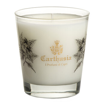 Infinity Oud Scented Candle