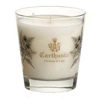 Mediterranean Oud Scented Candle